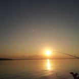 Striper Fishing With US